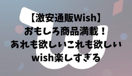 【激安通販Wish】おもしろ商品満載!あれも欲しいこれも欲しい、wish楽しすぎる