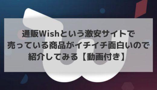 通販Wishという激安サイトで 売っている商品がイチイチ面白いので紹介してみる【動画付き】