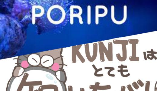 子テーマ「PORIPU」の導入と「タイトルロゴ」「アイコン」をゲットしたよ!