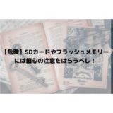 【危険】SDカードやフラッシュメモリーには細心の注意をはらうべし!