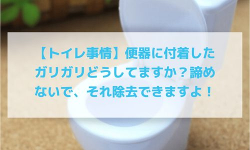 【トイレそうじ】便器に付着したガリガリどうしてますか?諦めないで、それ除去できますよ!