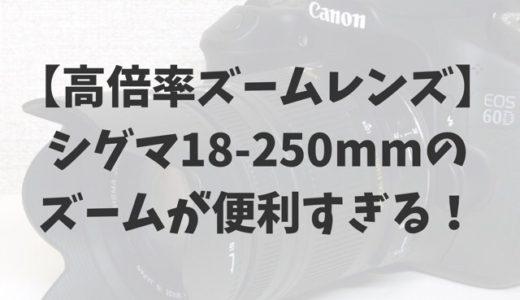 【高倍率ズームレンズ】シグマ18-250mmのズームが便利すぎる!