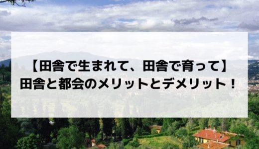 【田舎で生まれて、田舎で育って】田舎と都会のメリットとデメリット!