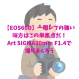 【EOS60D】一眼レフの強い味方はこの単焦点だ!Art SIGMA30mm F1.4で撮りまくろう