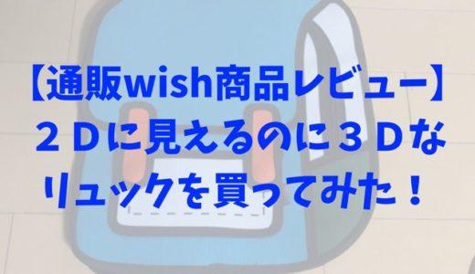 【通販wish商品レビュー】2Dに見えるのに3Dなリュックを買ってみた!