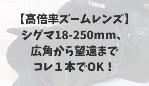 【高倍率ズームレンズ】シグマ18-250mm、広角から望遠までコレ1本でOK!