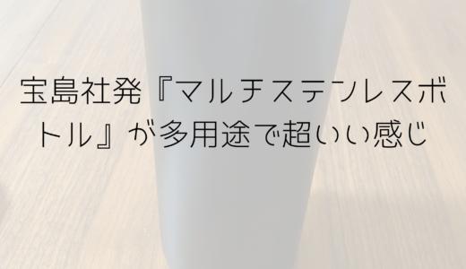 宝島社発『マルチステンレスボトル』が多用途で超いい感じ
